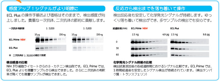 ECL Primeの特長 (ECL Plusとの比較)